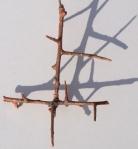 thorn1